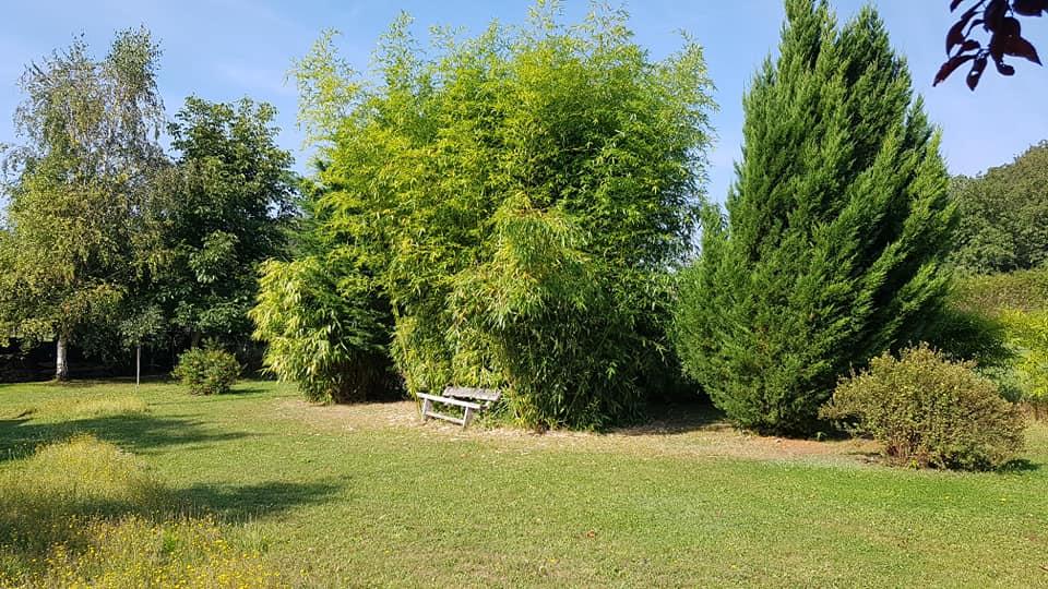 Aire camping-car à Dissé-sous-le-Lude (72800) - Photo 1